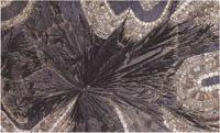 Bologna, Collezioni Comuna d'Arte, parrt. di piano di tavolo, prima metà sec. XIX (IBC-Iconoteca)