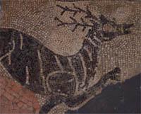 Reggio Emilia, Civici Musei, mosaico romanico (IBC-Iconoteca)