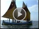 Video: La saviolina