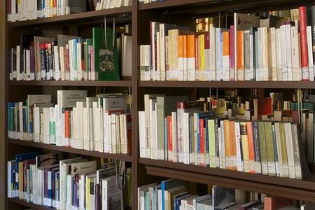 Ricerca nel catalogo della biblioteca