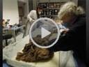 Gli abiti delle mummie di Roccapelago. Le vesti di sempre.