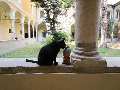 """""""Il mio nuovo amico della Biblioteca Classense"""""""
