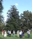 Mezzolara di Budrio (BO) 28 settembre 2014