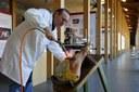 Museo del Prosciutto Punzonatura del prosciutto