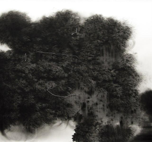 Giulia Dall'Olio, g 19][189 d, 2018, carboncino e acrilico su carta incollata su tela