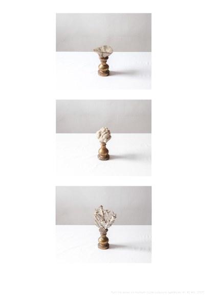 Jacopo Valentini, a triptych from the series Vis Montium (Coral Collezione Spallanzani #1 #2 #4), Reggio Emilia, 2019, fotografia