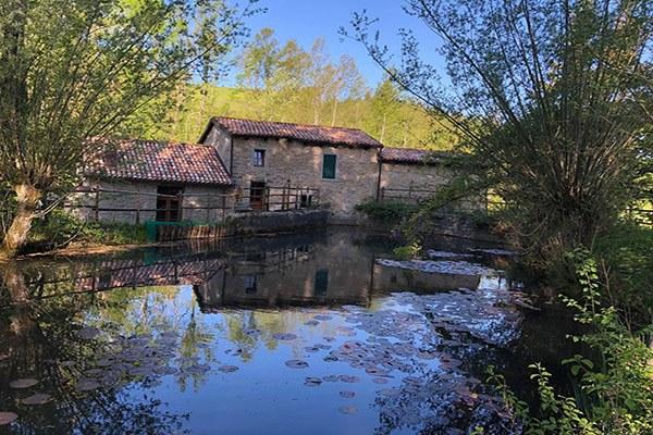 Mulino-Mazzone-a-Piamaggio-di-Monghidoro-Ph.-Alessandra-Antonelli-via-Iat-Monghidoro.jpg