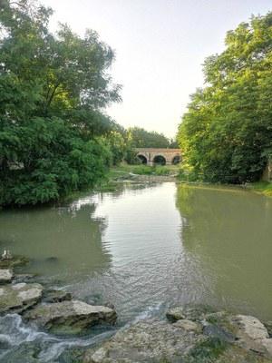 18.Limes_Ponte romano di Savignano.jpg